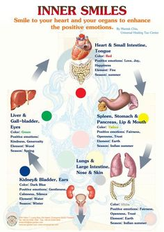 Emotions, their effect on organs & the inner smile The emotions are considered the major internal causes of disease in Chinese medicine. Emotional activity is seen as a normal, internal, physio…