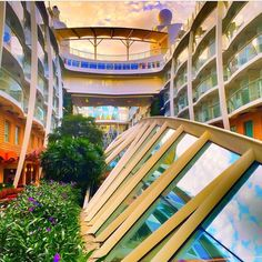 Oasis of the Seas' Central Park. #Ofertravel #RoyalCaribbean
