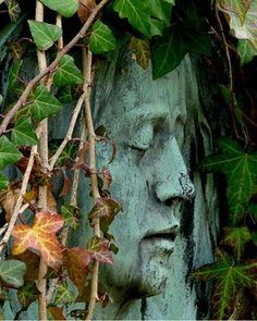 Fantastic images...this is why I've always been crazy about cemeteries...