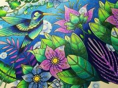 Johanna Basford - Magical Jungle - Blue Hummingbirds with Prismacolors - Part 2 - YouTube