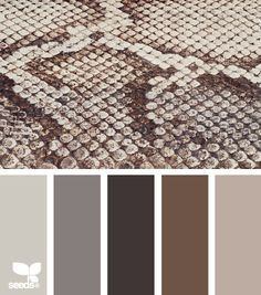 snake skin hues - hate snakes, like this color scheme, though