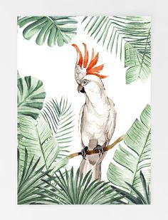 webshop creative lab amsterdam - jessica janna webshop creative lab amsterdam webshop creative lab a Art And Illustration, Watercolor Illustration, Watercolor Bird, Watercolor Paintings, Watercolor Portraits, Afrique Art, Art Mural, Murals, Tropical Art
