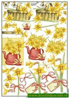 Marianne Cut out sheet flowers nr. 3D 525 - Flowers