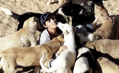 Animais também estão entre as vítimas do conflito na Síria. Muitos acabam feridos, outros se perdem da família ou são deixados para trás pelos donos, que...