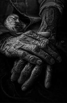 Me gusta refugiarme en  la madurez de tus manos