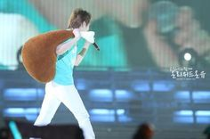 Chicken pillow and Onew
