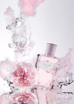 Les Infusions de Prada ~ Infusion d'Oeillet contains carnation, Australian sandalwood, styrax, Indonesian patchouli and mandarin essence.