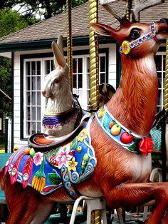 Carousel Animals | weird carousel animals | Flickr - Photo Sharing!