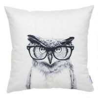Professor Owl Toss 16x16