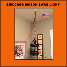 Edison Light Birdcage Swag - Super cute - Oil Rubbed Bronze. $39.99.
