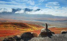 Arctic-ground-squirrel-D.jpg (Image JPEG, 1920×1200 pixels) - Redimensionnée (59%)