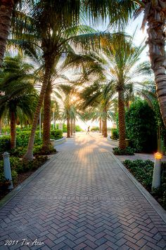 Walkway under 1500 Ocean Drive South Beach Miami... walked through here so many times <3