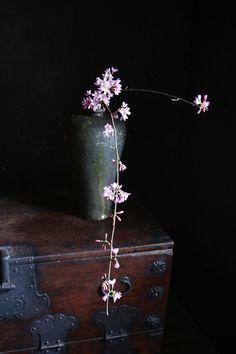 Flowers Photography Still Life Floral Arrangements 23 Ideas For 2019 Arrangements Ikebana, Ikebana Flower Arrangement, Floral Arrangements, Deco Floral, Arte Floral, Floral Design, Japanese Flowers, Japanese Art, Wabi Sabi