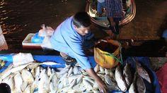 Corniche Fish Market - by Noora Alfadala - The Moving Postcards Project #VCUQatar #Doha