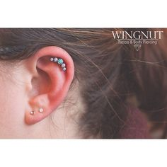 Anatometal clusters are the jam lately! Come get one before they're all gone!  (at Wingnut Tattoo and Body Piercing)