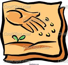 seeds clipart - Google Search