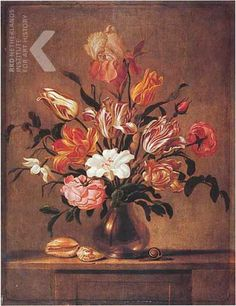 1645 - Aelst, van der Evert -  Flowers in a glass vase, with sea shells and a snail, on a stone table