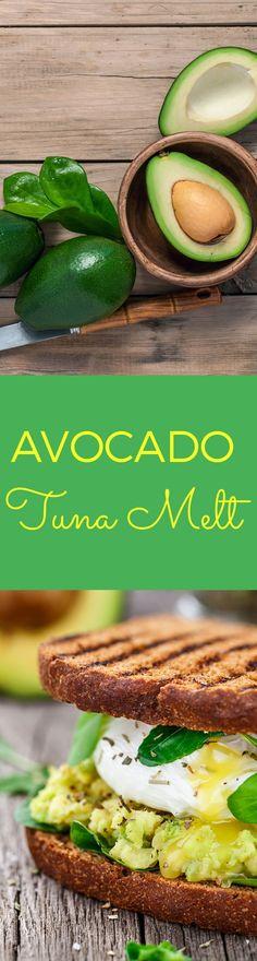avocado tuna melt