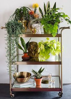 Try using a bar cart for a mobile station for indoor potted plants to get greenery on the go! Perfect for a home office or entryway. Studio Tour: Justina Blakeneys Boho Space - See the full tour on our Style Guide! Bar Cart Decor, Decoration Plante, Metal Tree Wall Art, Metal Art, Plant Decor, Home Design, Interior Design, Houseplants, Indoor Plants