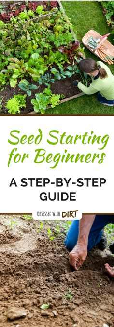 Seed Starting Guide: Quick Tips for Starting Seeds Successfully -