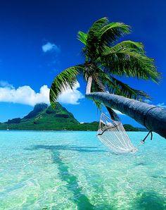 Bora Bora- i will go someday honeymoon, puerto rico, french polynesia, dream vacations, beach, hammock, place, bucket lists, bora bora
