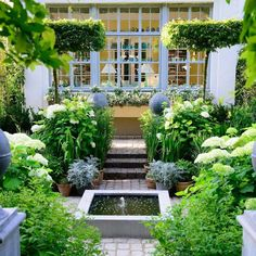 These are the top garden trends of 2019, according to Google searches