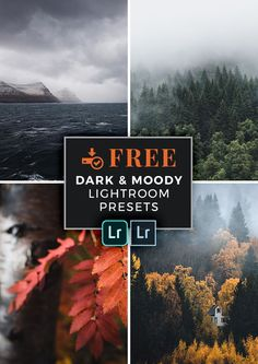 FREE Lightroom Presets for Dark and Moody Landscape Photography (moody / fog / landscape / nature / mist / foggy / weather / outdoor / cloud / travel / winter / season / scenic / forest / autumn / tree / beach / lake / ocean / clouds / woods / mountains / rain / coast)