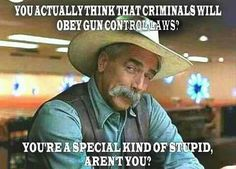 The only reason for more gun laws is to infringe upon the 2nd Amendment rights of law abiding citizens