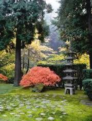 Image result for portland japanese garden Strolling Pond Garden