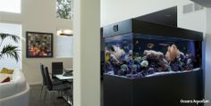 180 gallon living reef acrylic aquarium with modern black free-standing cabinet stand and canopy. In Los Angeles, CA.