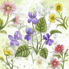 Wildflowers Purple by Elena Vladykina
