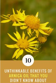 Arnica Benefits: 10 Unthinking Uses of Arnica Oil That You Didn't Know Coconut Oil For Teeth, Benefits Of Coconut Oil, Oil Benefits, Organic Essential Oils, Natural Health Remedies, Herbal Remedies, Organic Oil, Natural Skin Care, Herbalism