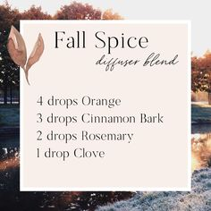 Fall Spice Essential Oil Diffuser Blend - Essential Oil - Ideas of Essential Oil Fall Essential Oils, Clove Essential Oil, Essential Oil Perfume, Essential Oil Diffuser Blends, Essential Oil Uses, Perfume Oils, Cedarwood Oil, Drop, Young Living