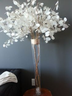 Silver Dollar (Non Floral) Like these... Just an idea; however, don't know where they could be used.