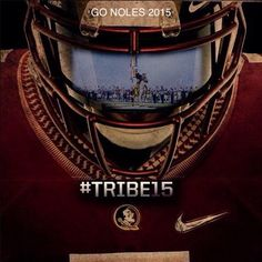 FSU 2015.   R u ready for some Nole football?  I am!