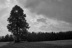 Storm is coming - shared with pixbuf.com #landscape #nature #weather #bw #monochrom #leica #czechrepublic #ceskesvycarsko