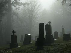 Foggy Cemetery in Portland, Oregon