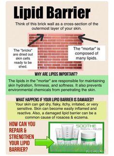 Good information about repairing sensitive skin. Eczema Rosacea psoriasis soothe Rodan and Fields