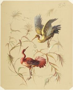 Two birds surrounded by branches with leaves. Styrofoam Art, Rose Sketch, Traditional Japanese Art, Muse Art, Iranian Art, Bird Illustration, Naive Art, Watercolor Bird, Indian Paintings