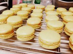 Lemon M acaroons