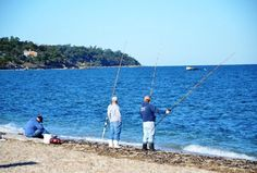 Town beach southold fishing