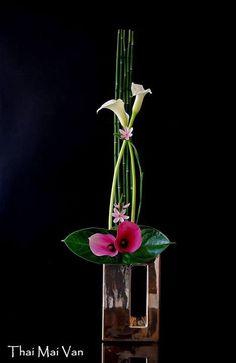 By Thai Van Mai