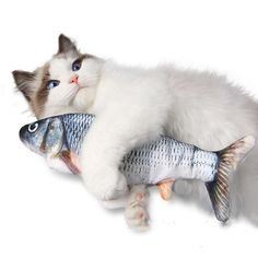 USB Rechargeable Self Moving Fish Cat Toy – KittenLands