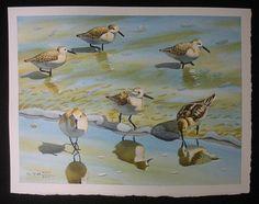 Sandpiper 1 Ocean Beach Sea Bird Nautical Original by artbyhan, $185.99
