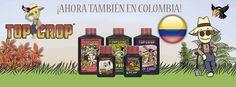 Le damos la #Bienvenida a Top Crop #Fertilizantes #Organicos especializados en el #Cultivo De #Cannabis #MArihuana con una gran trayectoria con sus productos 4 veces!!!! mas concentrados!!!!! Bienvenidos #TopCrop a Grow Shop Bogotá Colombia venta al #mayor de #Articulos de #Cultivo para Tiendas #SmokingShop, #GrowShop , #HeadShop