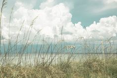 Beach Photography Seascape Art Beach Print by KateRyanFineArt. Serene and peaceful. Photography Sites, Beach Photography, Fine Art Photography, Digital Photography, 6 Photos, Beach Photos, Nature Photos, Pictures, Seascape Art