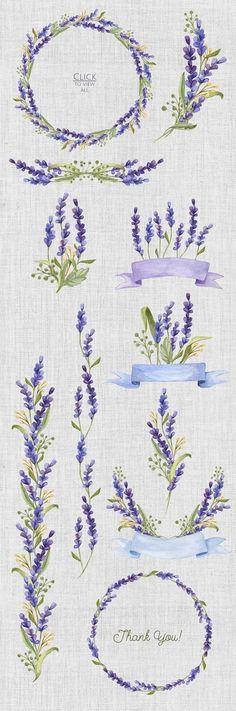 Conjunto de la acuarela con lavanda Flores - Ilustraciones - 4