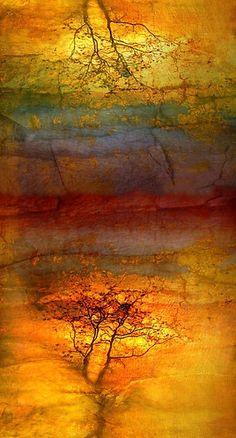 'The Soul Dances Like a Tree in the Wind' Kunstdruck by Tara Turner Patterns Background, Encaustic Art, Art Abstrait, Art Plastique, Tree Art, Oeuvre D'art, Painting & Drawing, Turner Painting, Amazing Art