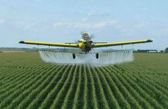 August 3  National Airplane Crop Duster Day