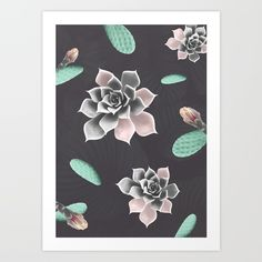 Collect your choice of gallery quality Giclée, or fine art prints custom trimmed by hand in a variety of sizes with a white border for framing. Pattern Art, Print Patterns, Buy Succulents, Fine Art Prints, Cactus, Gallery, Frame, Picture Frame, Cactus Plants